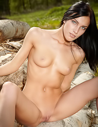 Megan C poses completely nude by the logs outdoors and shows us her divine, foxy booty.