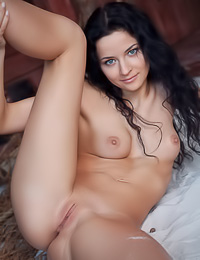 Inviting dark haired cutie gets fully naked revealing her soft boobies and her shaved twat.