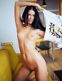 Enticing raven haired hottie poses naked flaunting her small tits and her tender shaved twat.