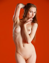 Alluring slim brunette poses naked showing her small round tits and her lovely shaved pussy.