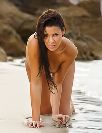 Dainty brunette hottie strips on a beach to reveal her firm round ass and a shaved pussy.