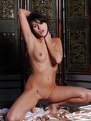 Shyla Jennings Picture 13